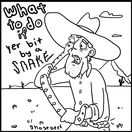 What To Do If Yer Bit By a Snake