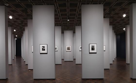 <i>Diane Arbus: In the Beginning</i> installation view