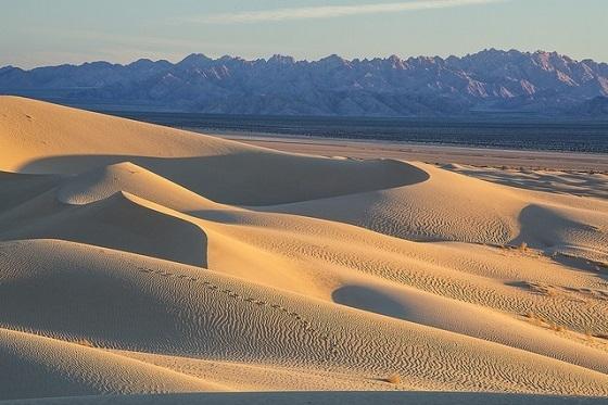 <i>Cadiz Dunes, California</i>. Photograph by Bob Wick, Bureau of Land Management / Flickr