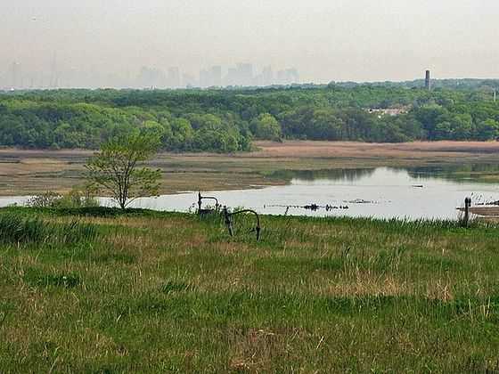 <i>Downtown Manhattan in the distance, viewed from Staten Island's Freshkills Park, 2010</i>. Photograph by H.L.I.T. / Wikimedia Commons
