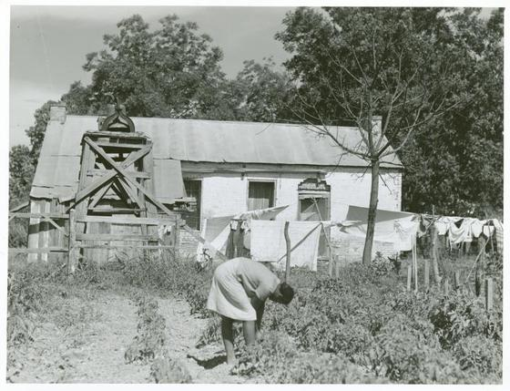 <i>Old slave quarters. Louisiana, 1940</i>. Photograph by Marion Post Wolcott / NYPL Schomburg Center