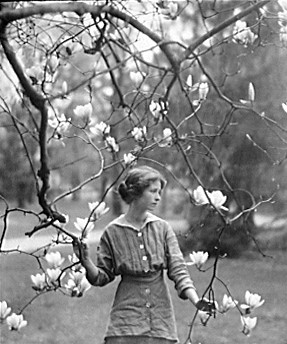 <i>Edna St. Vincent Millay</i>. Photograph Courtesy of Library of Congress Prints and Photographs.