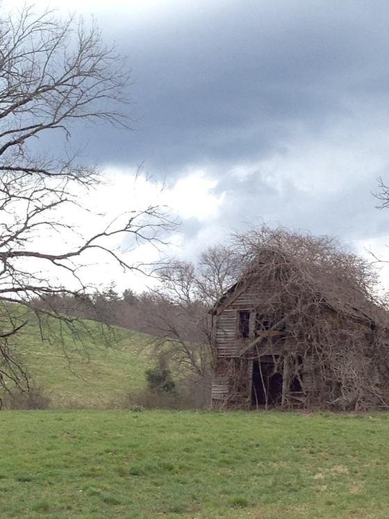 <i>Dahlonega barn</i>. Photograph by Lucy Jane Bledsoe
