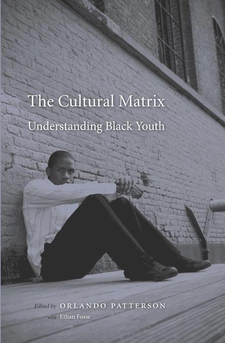 Panel Discussion on Orlando Patterson's The Cultural Matrix